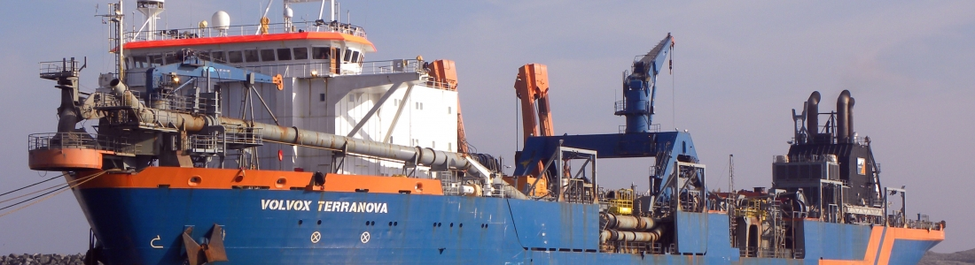 Volvox Terranova